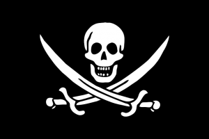 Pirates du Net